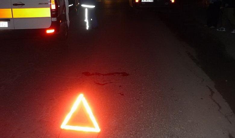 """На трасі Київ-Чоп прямо під час руху на мікроавтобус впало дерево. Пасажира забрала """"швидка"""""""