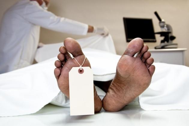 На Мукачівщині чоловік виявив тіло жінки: поліція встановлює особу померлої людини