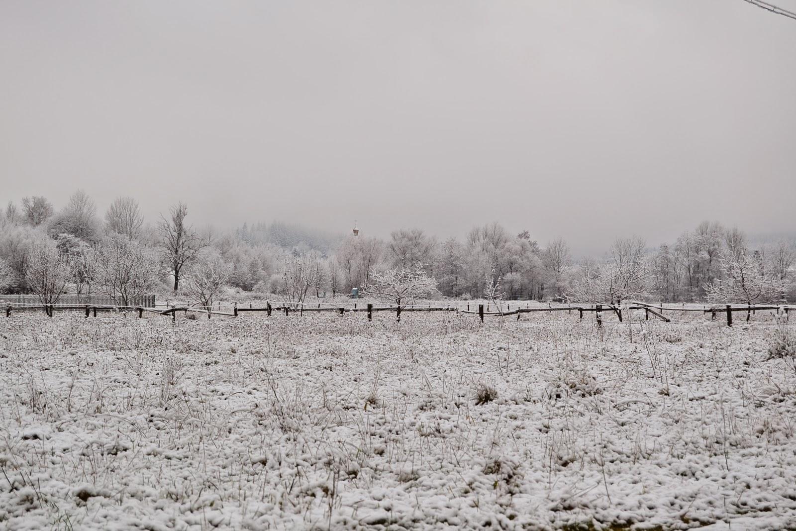 Гірські райони Мукачівщини присипало снігом