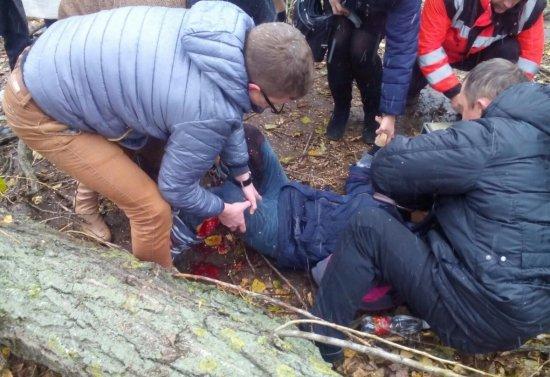 Біля однієї зі шкіл Ужгорода дерево впало на дівчинку