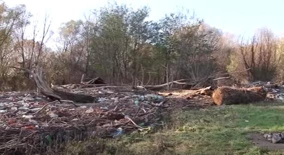 Береги Слов'янської набережної в Ужгороді потопають у смітті