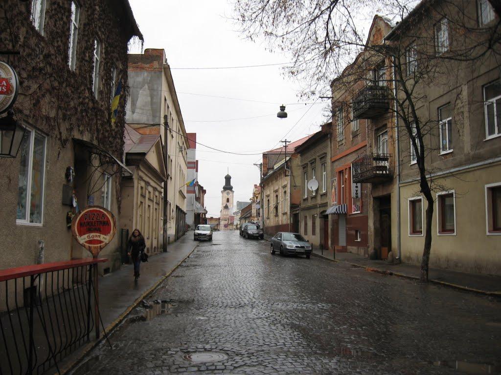 На вулиці Волошина в Ужгороді на два дні перекриють рух транспорту
