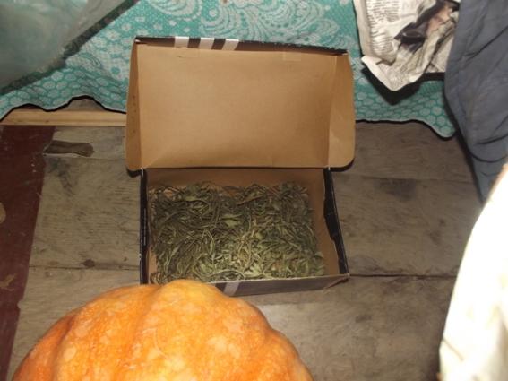 Більше трьох кілограмів наркотиків виявили під час обшуків у жителя села Нижні Ворота