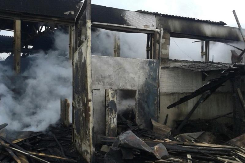 Велика пожежа на складі пиломатеріалів в Ужгороді могла виникнути через коротке замикання в електромережі