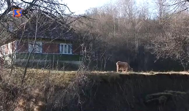 Швидкоплинна річка у період повеней руйнує переправи в одному із сіл Великоберезнянщини