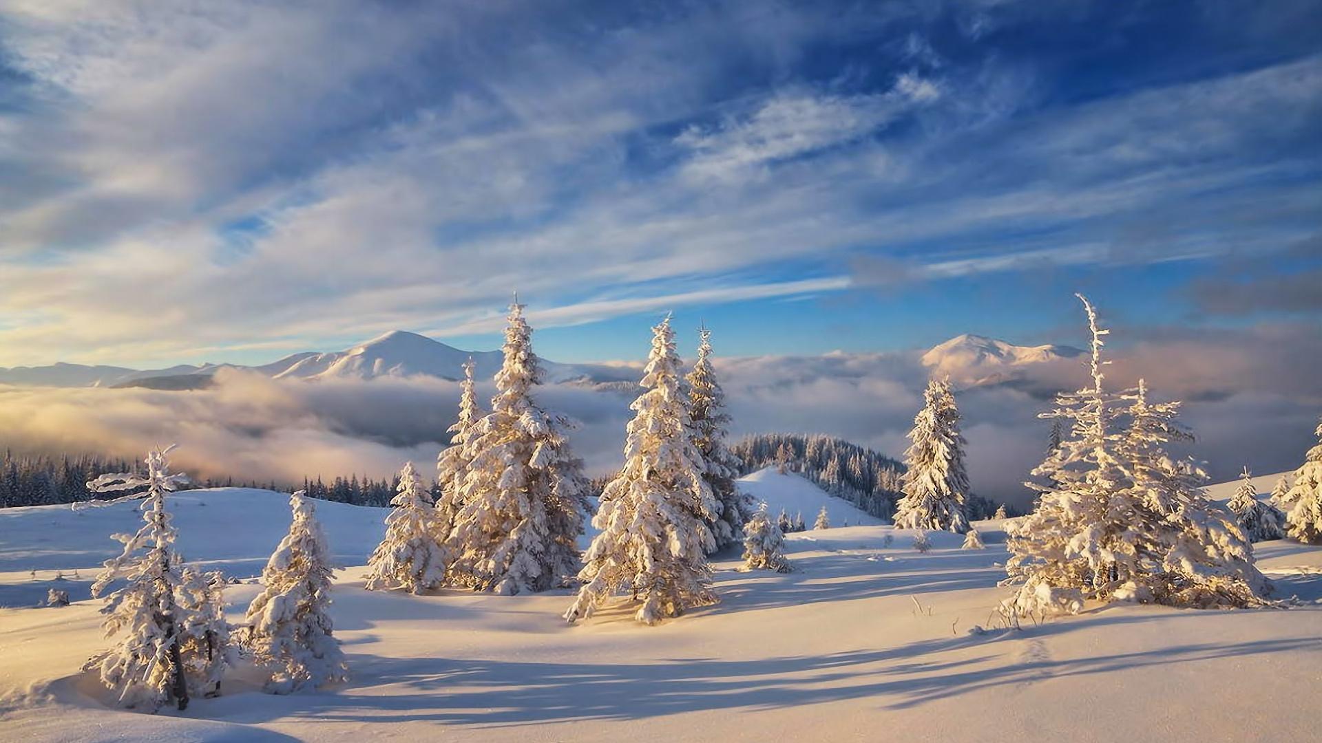 Перші дні зими закарпатці зустрінуть з морозами та снігом