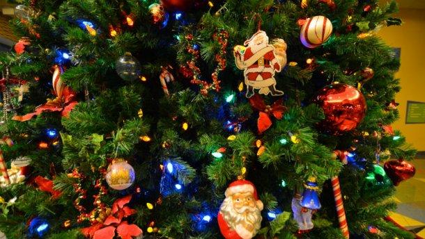 Лісівники пропонують новорічні ялинки напрокат
