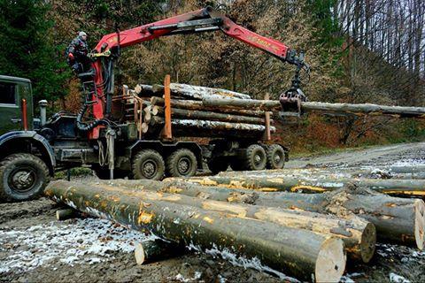 Сучасні технології дісталися лісів Рахівщини