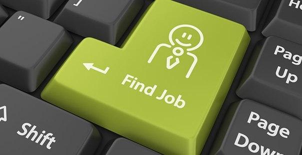 Гіркі реалії працевлаштування за фахом: роботодавці не хочуть приймати на роботу людей без досвіду