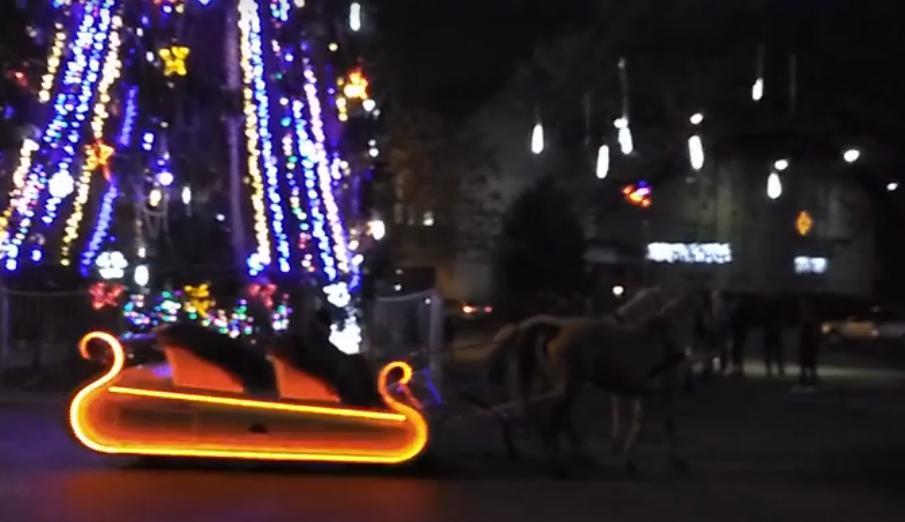 """У Виноградові місцеві жителі влаштували різдвяний святковий атракціон з конями та своєрідним """"Бентлі"""""""