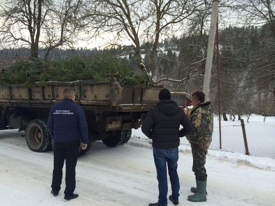 На Міжгірщині затримали майстра лісу, який вимагав 10 тисяч гривень хабара за відпуск ялинок за заниженими цінами