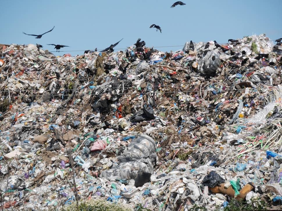 На Ужгородщині може гостро постати проблема сміттєзвалища