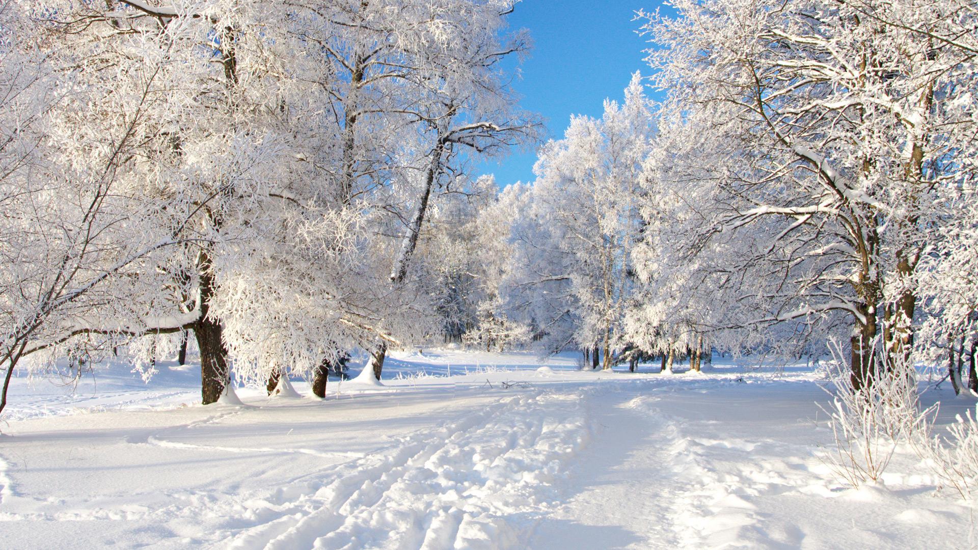 На Різдво на Закарпатті очікуються аномальні морози