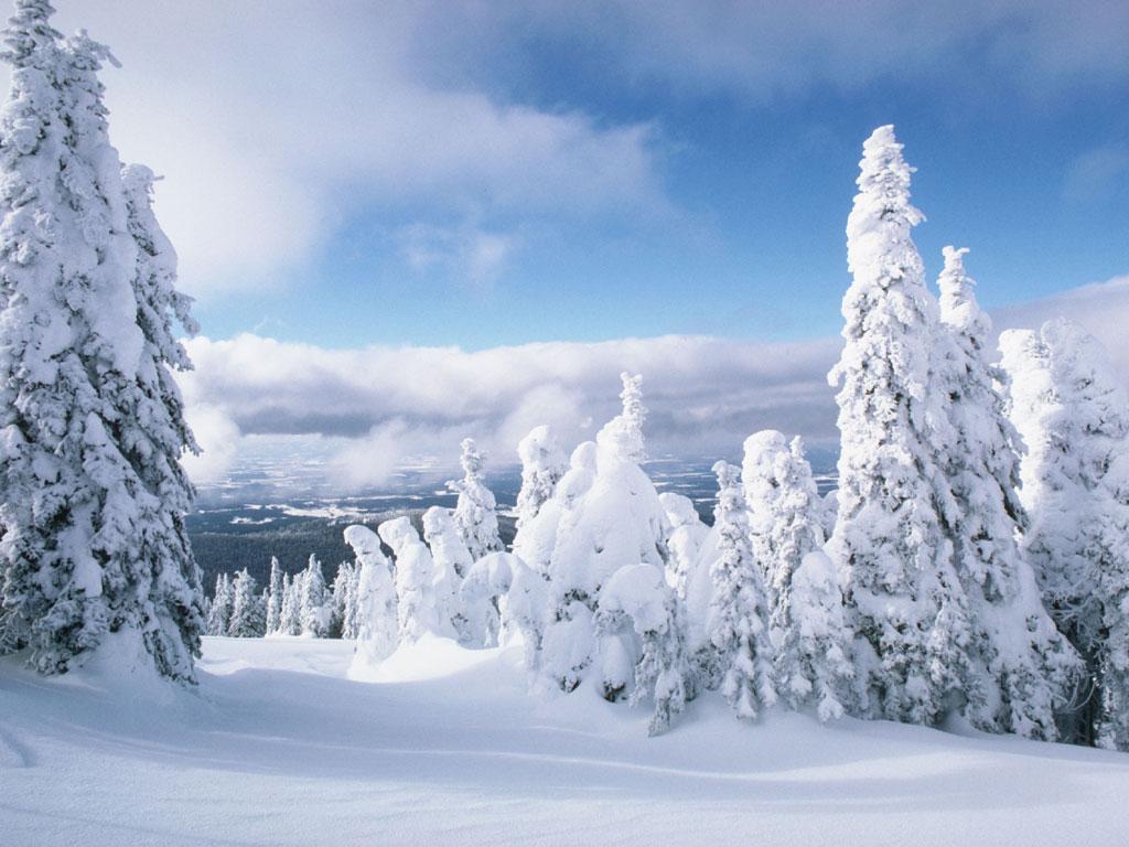 Синоптики прогнозують на Закарпатті різке похолодання та сильні снігопади