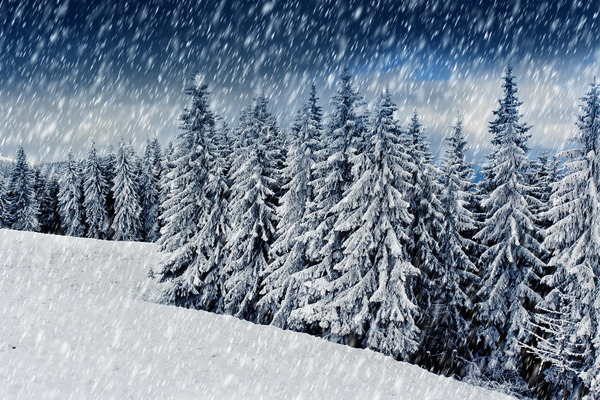Синоптики прогнозують сильні снігопади на Закарпатті на другу половину п'ятниці