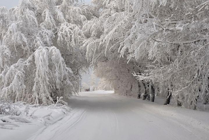 Через півметровий шар мокрого снігу проїзд до шести високогірних сіл на Воловеччині заблокований