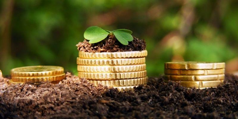 """Підприємець взяв в оренду землю вартість 18 мільйонів для сінокосіння, а насправді """"викачує"""" з неї природні багатства"""