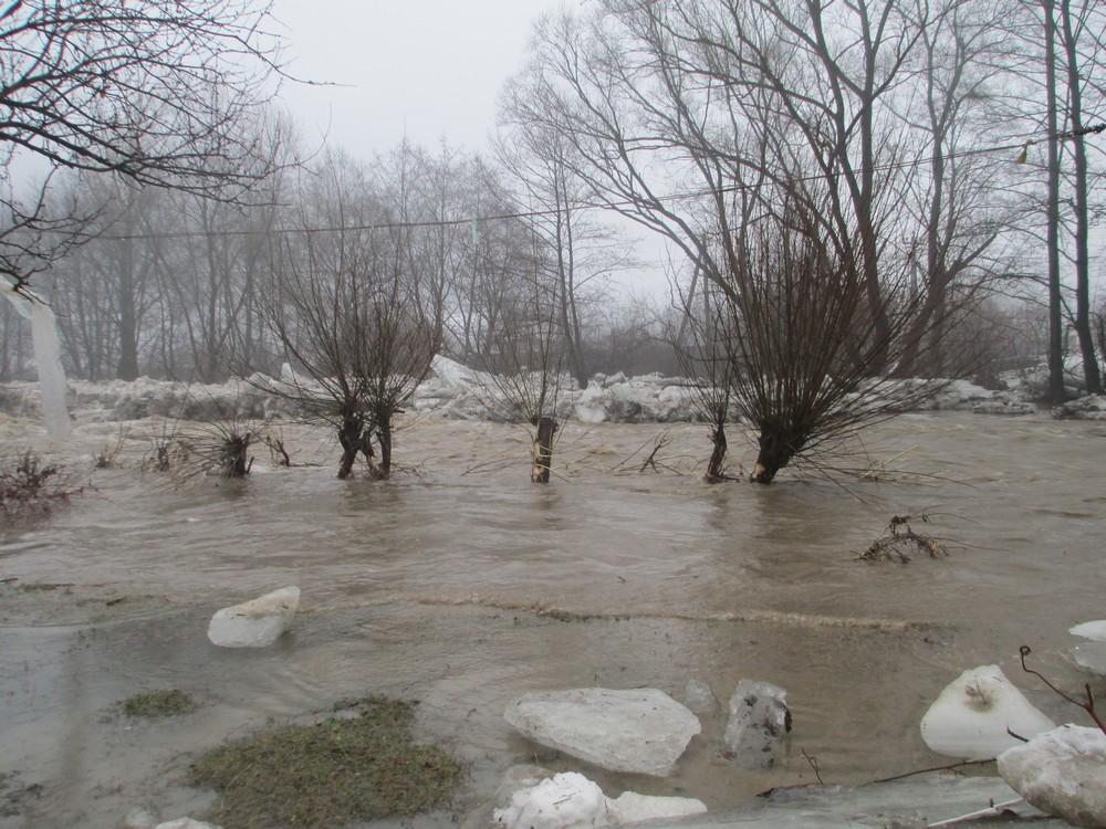 На Закарпатті внаслідок негоди підтопленими залишаються 525 дворогосподарств