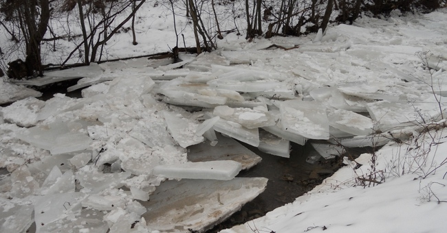 Ужгород і його околиці можуть бути підтоплені через льодовий затор у Словаччині
