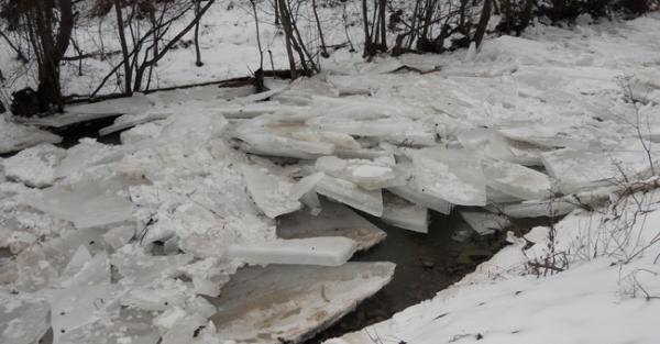 Вода в Латориці поблизу Чопа піднялася до 5 метрів: загрози підтоплень немає
