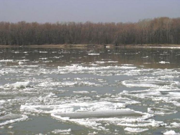 Рівень води в Тисі біля Чопа всього на 47 сантиметрів менший, ніж під час руйнівного паводка 2001 року