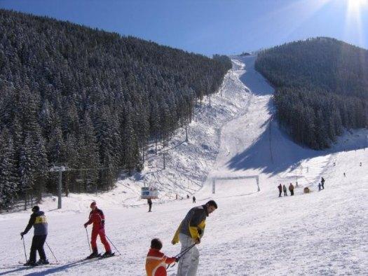 Маленьких закарпатців навчали кататися на лижах