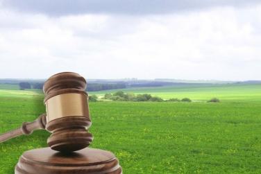 Земельну ділянку, вартістю майже 40 млн. гривень у державну власність через суд повертає Хустська прокуратура