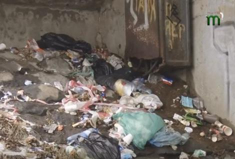 У центрі Ужгорода утворилось стихійне сміттєзвалище