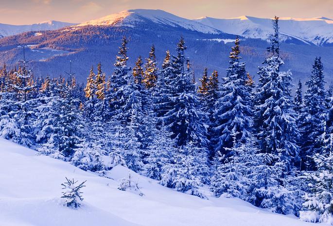 Краса гірських районів Закарпаття