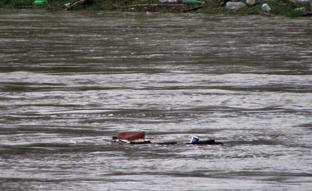 Збільшення рівня води в Латориці призвело до виходу води на заплаву в Ужгородському районі