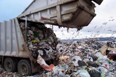На Виноградівщині планують збудувати сміттєпереробний завод