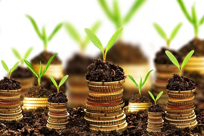 Більше 39 мільйонів гривень у місцевому бюджеті Закарпаття – плата за використання землі