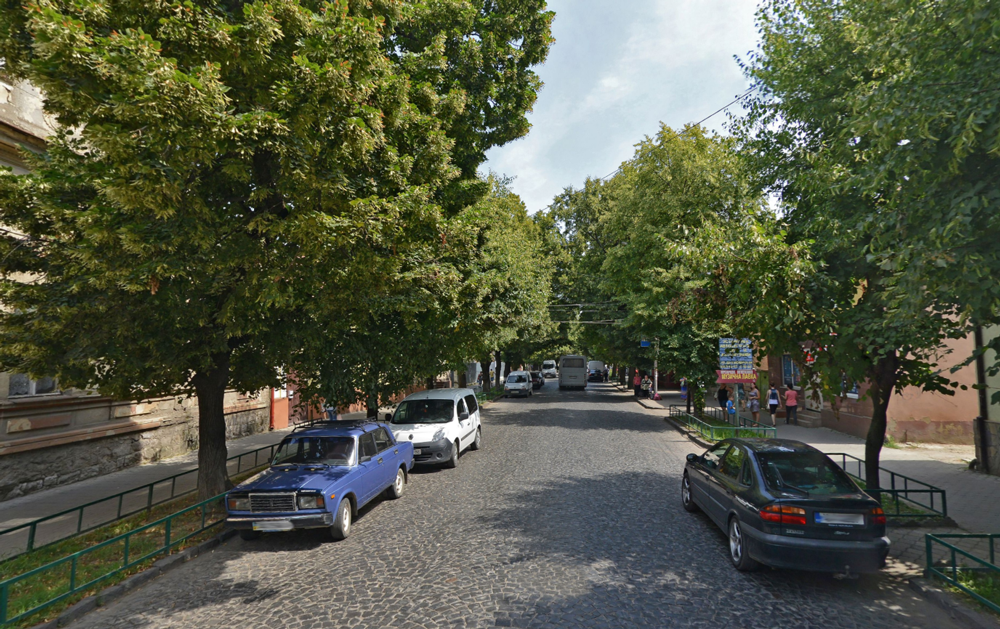 У Мукачеві по вулиці Духновича вирізатимуть дерева