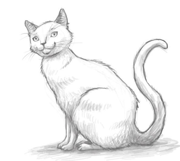 АртФест «Березневі коти – ХІІ» розпочнеться вже за тиждень