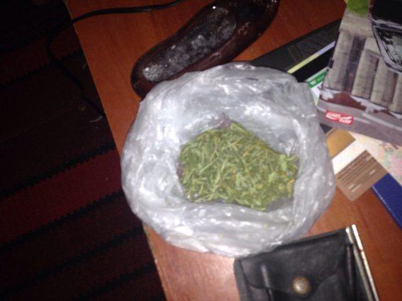 Закарпатська поліція перекрила канал поширення марихуани