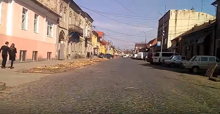 Дерева на вулиці Духновича у Мукачеві вирізали під чисту