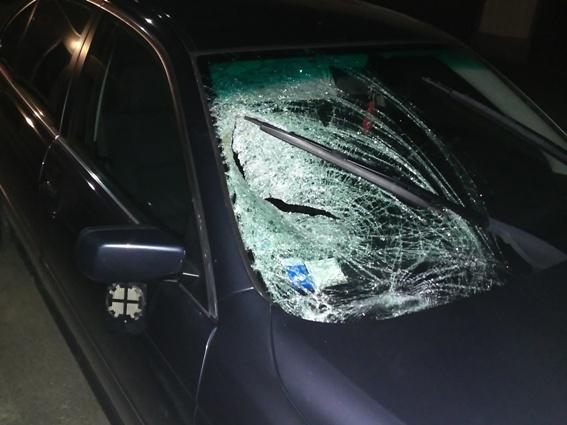Жінка в реанімації у важкому стані: на Виноградівщині трапилась жахлива ДТП