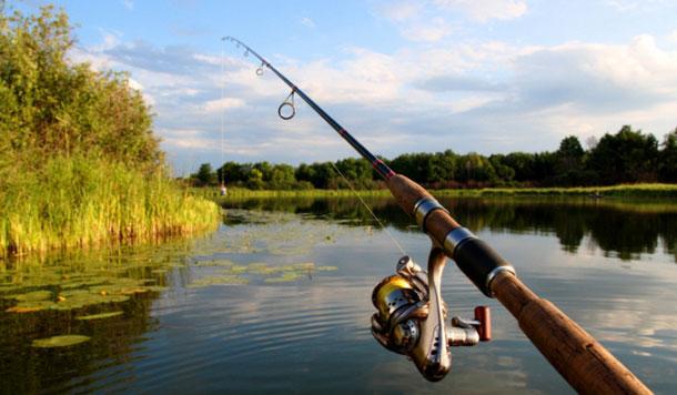 На Закарпатті заборонили ловити рибу