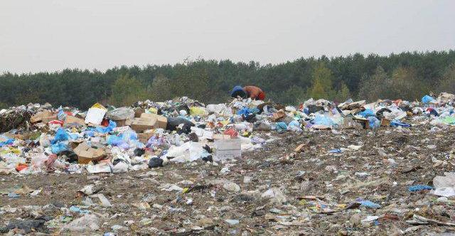 На Ужгородщині утворилося приватне сміттєзвалище