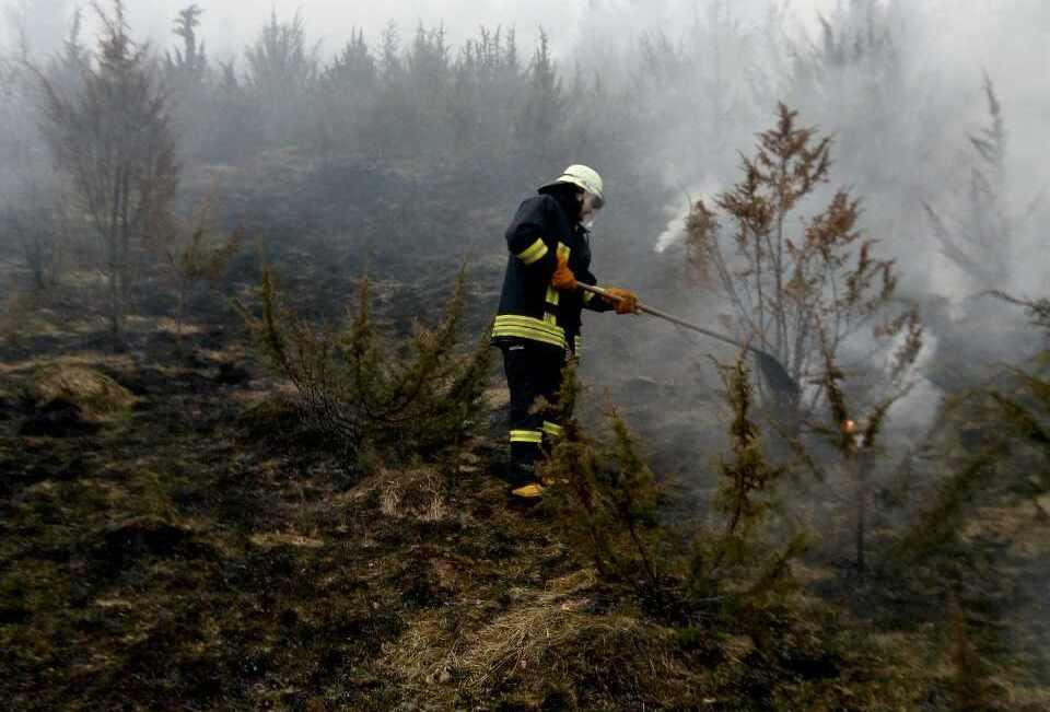 Закарпатці безжально спалюють суху траву. Разом з нею часом загорається і ліс