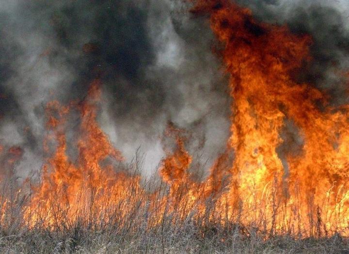На Берегівщині через підпал трави призупинили газопостачання у 7 селах