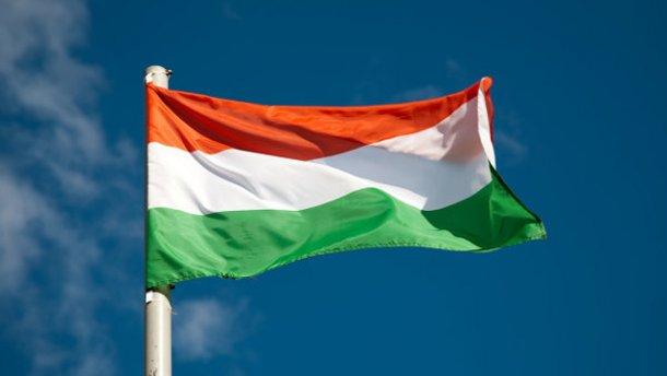 У Берегівській РДА запевняють, що прапор пошкодили не вандали