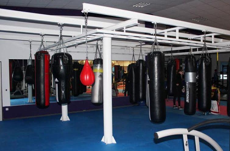 Закарпатські боксери співпрацюватимуть із боксерськими клубами Німеччини
