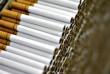 На Закарпатті розпочали масштабну операцію щодо протидії контрабанді цигарок