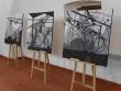 Чотири закарпатські художниці презентували свої роботи