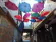 В Ужгороді вандали знову нищать візитівку міста