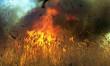 Рятувальники попереджають про високу пожежну небезпеку