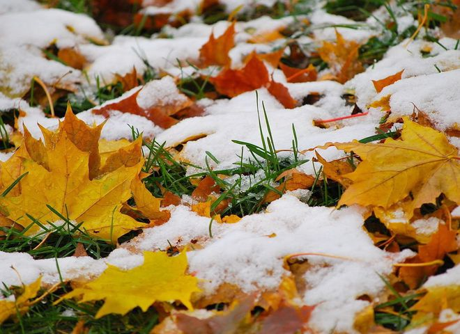 Синоптики прогнозують, що у жовтні випаде перший сніг