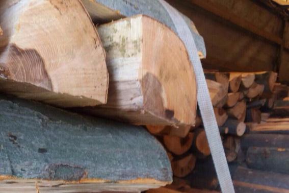 Закарпатці незаконно нарубали повну вантажівку дров