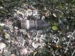 Закарпатець виявив вибухонебезпечний предмет у власному дворогосподарстві